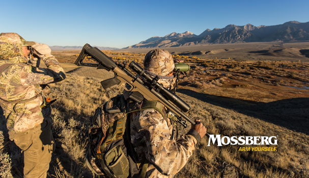 mossberg-wallpaper-look-out-CTA.jpg