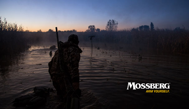 mossberg-wallpaper-night-waterfowl-CTA.jpg