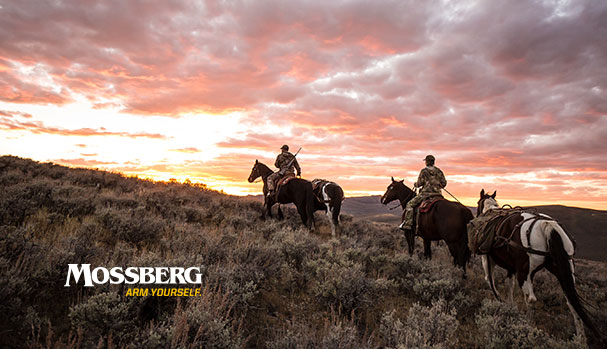 mossberg-wallpaper-horse-riding-CTA.jpg