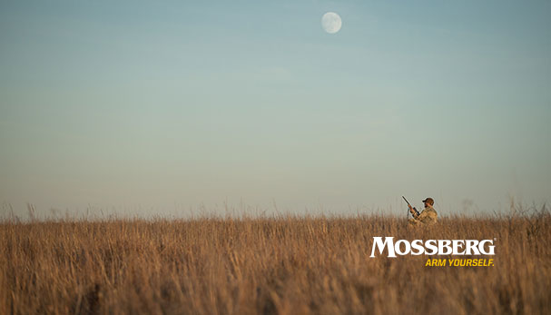 mossberg-wallpaper-guy-in-field-CTA.jpg