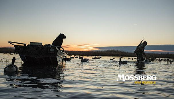 mossberg-wallpaper-waterfowl-CTA.jpg